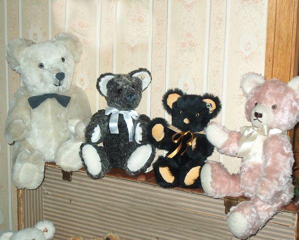 teddy-005.jpg