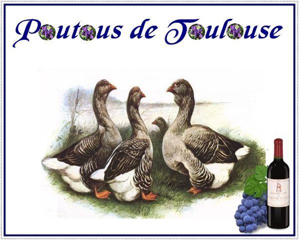 Les-oies-de-Toulouse.jpg