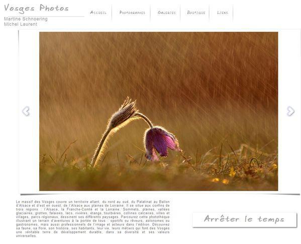 Vosges-photos fleur