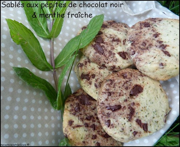 sables-menthe-chocolat-cookies.jpg