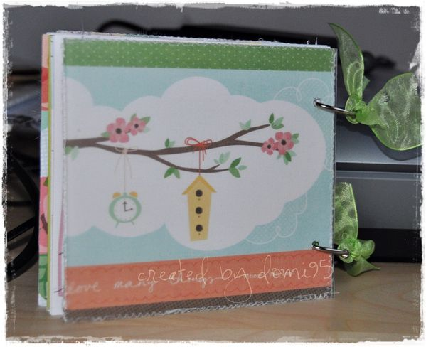 Mini-album Thibaut 0031blog