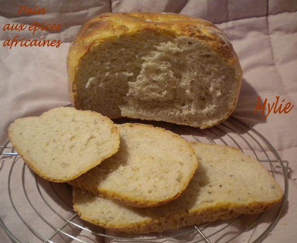 pain aux épices africaines 3