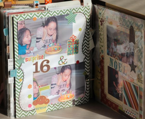 Project-Life-2013 5544