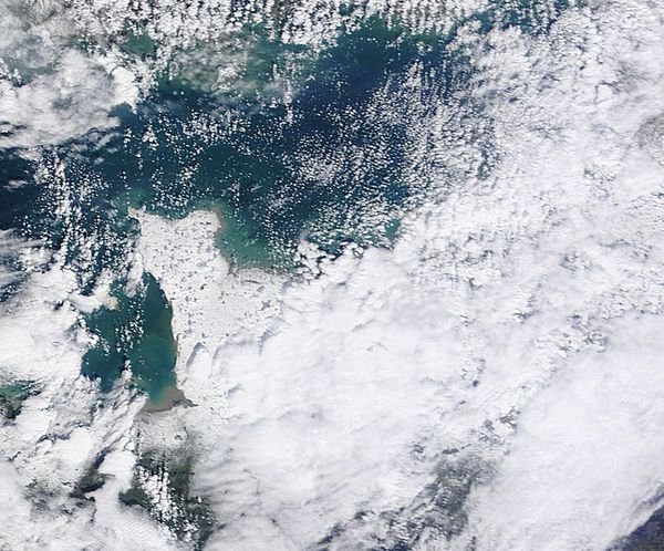 Terra - MODIS - Neige en France - Bretagne - Cotentin - Ré