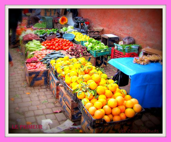 Maroc-2013-1691-copie-1.JPG