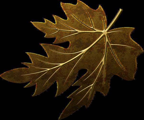 10042012 feuille branche marron or