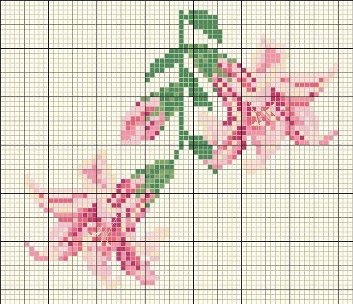 lys-rose--diagr-JPG