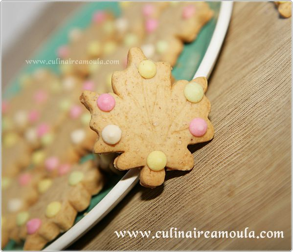 biscuit-cannelle-et-miel-2442-copie-1