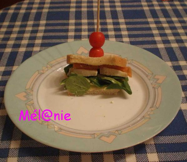club_sandwich_saumon.jpg