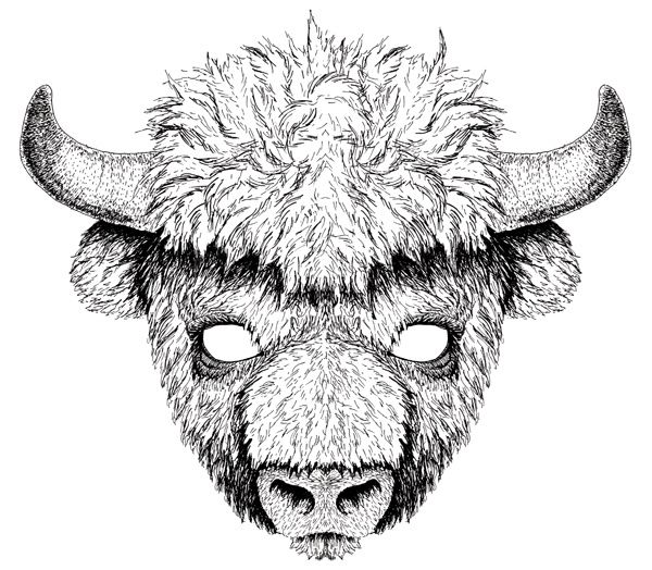 blog illustration jeunesse masque bison camille pepin