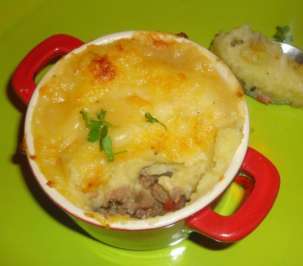 HACHIS PARMENTIER DE BRICE MORVENT