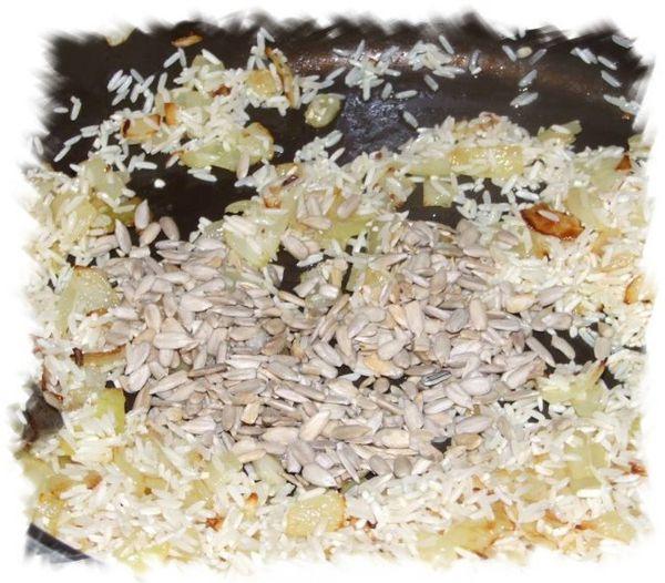 riz graines oignons