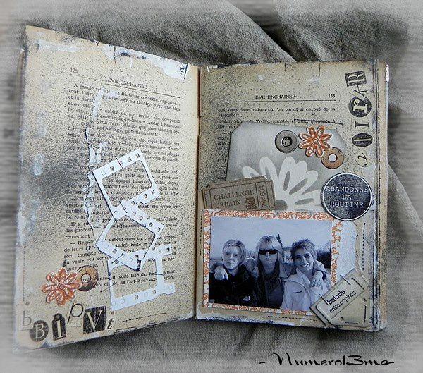 livre altéré11