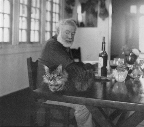 Hemingway-and-one-his-60-cats.jpg