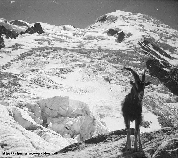 Le-Gouter-1935.jpg