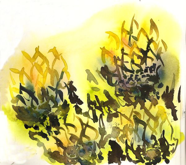 fleurs-cactus.jpg