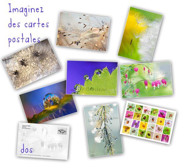 cartes-2013-02.jpg