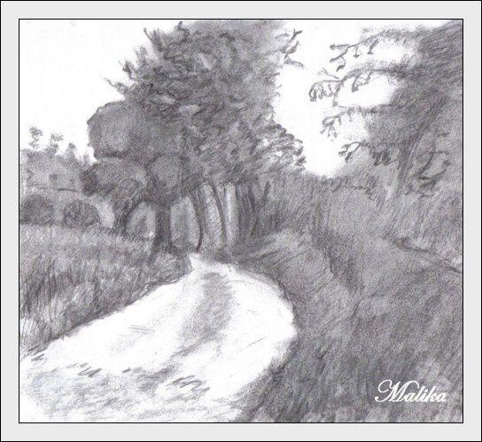 Chemin-de-campagne.jpg