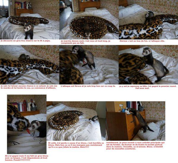 2012-10-23 oma et le serpent