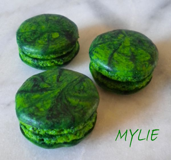 coques macarons 2