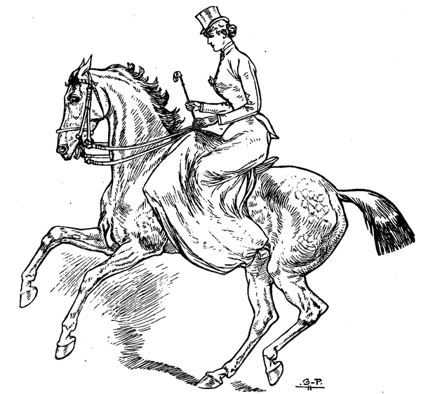 dessin-equitation-en-amazone-cavaliere-cheval.png