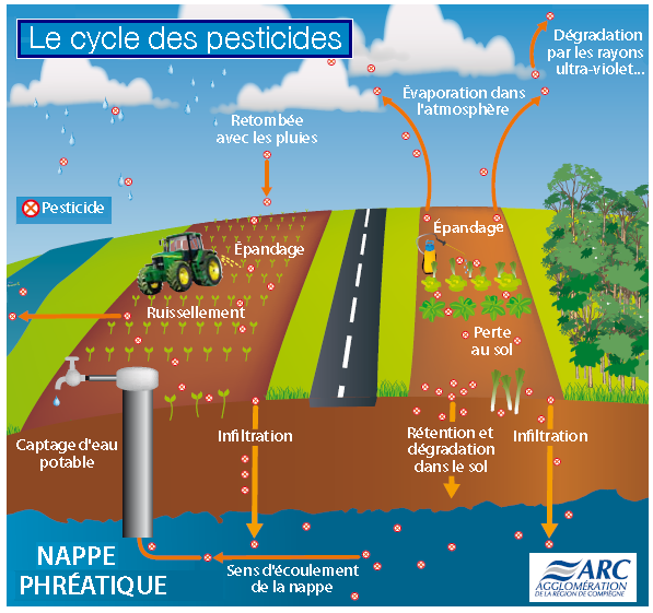 Cycle-des-pesticides