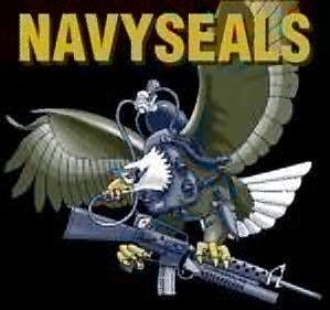 navy-seals.jpg
