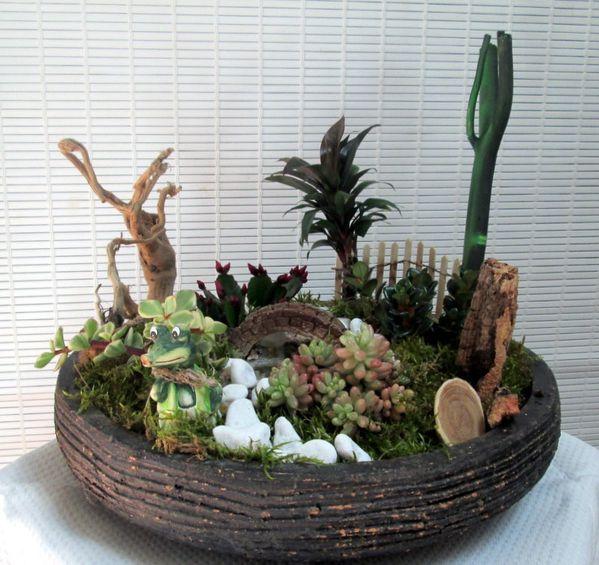 Mes bouquets la cour de re cr ations de mimi - Composition plantes grasses interieur ...