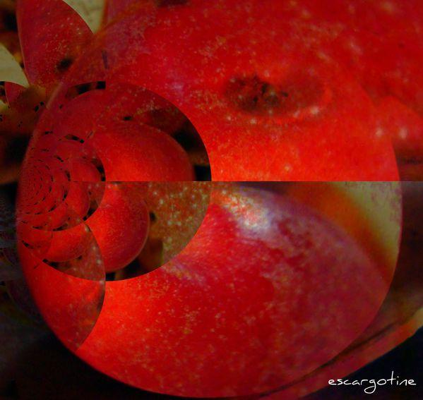 2010-10-25 defi pommes 005 1
