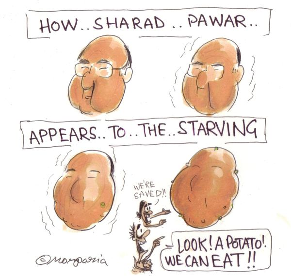 sharad-20pawar-20potato-20poor-20starving-20food-1-.jpg