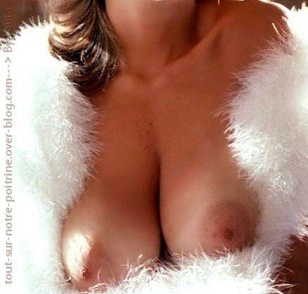 tétons mamellons étendus large seins beauté (51)