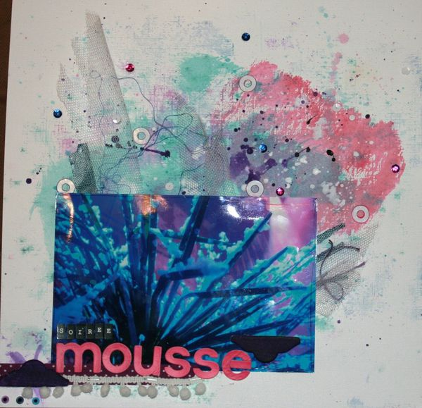 2014 07 soiree mousse1
