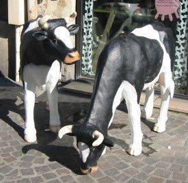 cowcow2