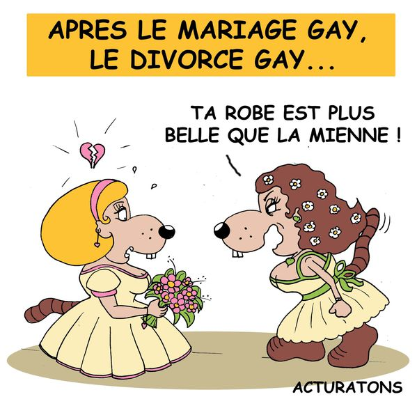 apr s le mariage gay le divorce gay dessins miss lilou. Black Bedroom Furniture Sets. Home Design Ideas
