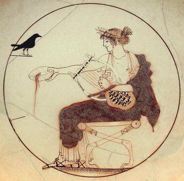 Apollo_black_bird_AM_Delphi_8140.jpg