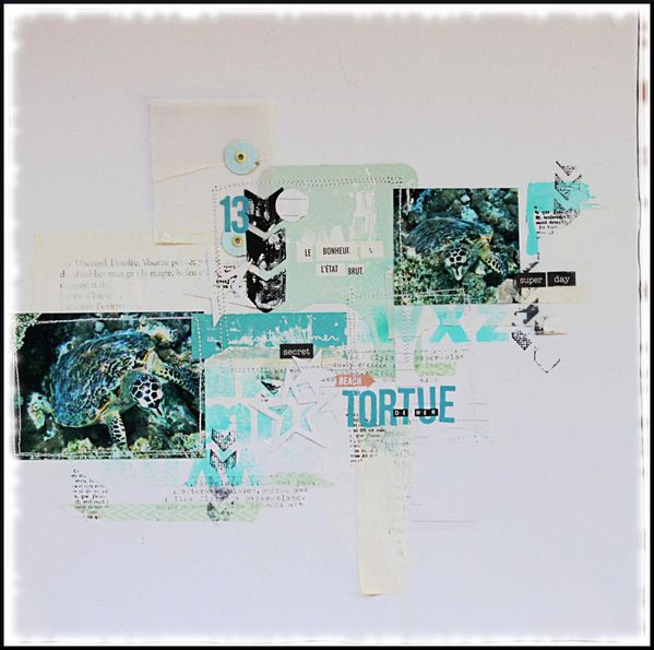 tortue-de-mermarie anne-48091b4