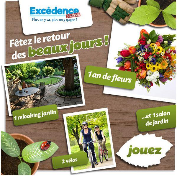 excedence_jeufleurs.jpg