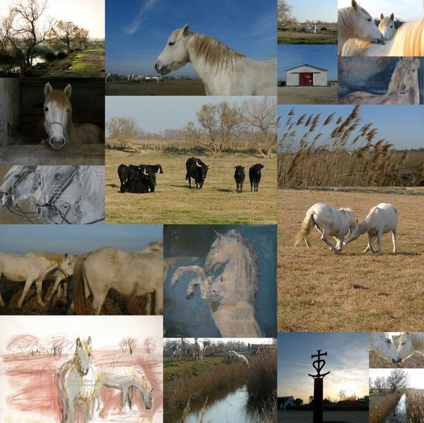 CAMARGUE-PEINTURE-copie-1.jpg