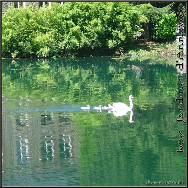jardins-annevoie-juillet-photofarfouille-073