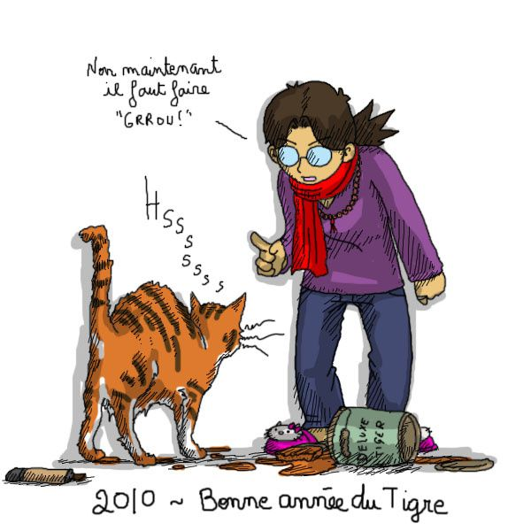 2010-nouvel-an-chinois-tigre.jpg