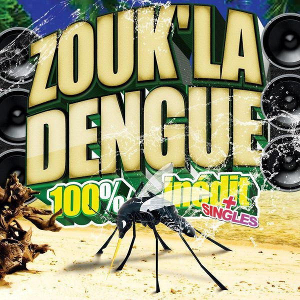 zouk la dengue 2013-copie-1