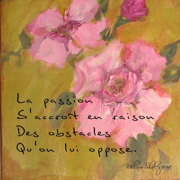 passionobstacles