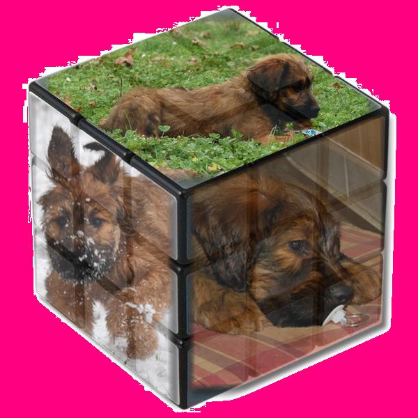 cube Bb