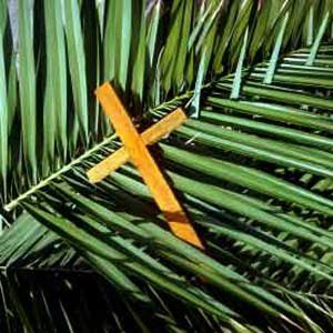 palm-sunday-usa.jpg