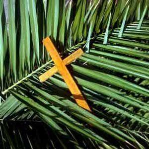 palm-sunday-usa.jpg