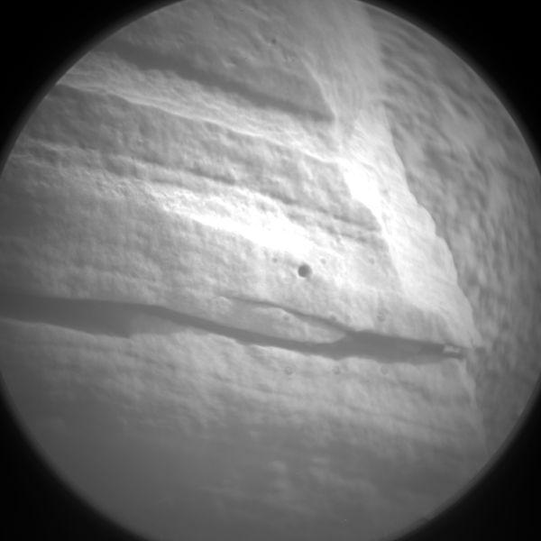 Curios-2-pris-3-decem-mis-4-dece.jpg