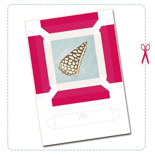 free-printable-shell-collection-box-4.jpg