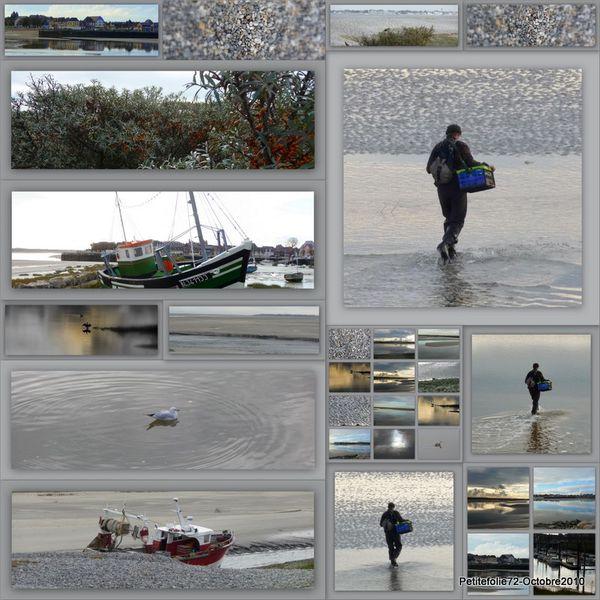 Baie de somme 2010-11