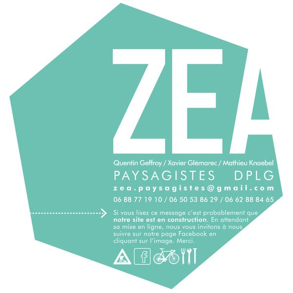 ZEA_Page-Construction-01.jpg