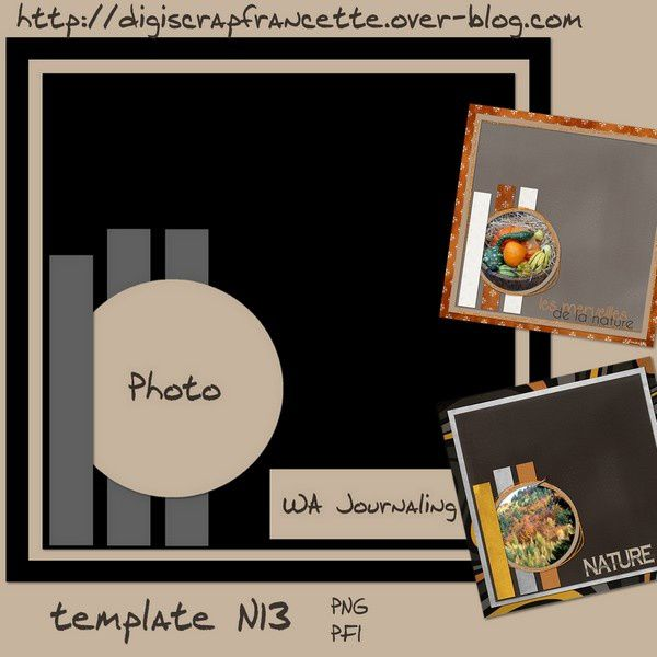 template N13 preview